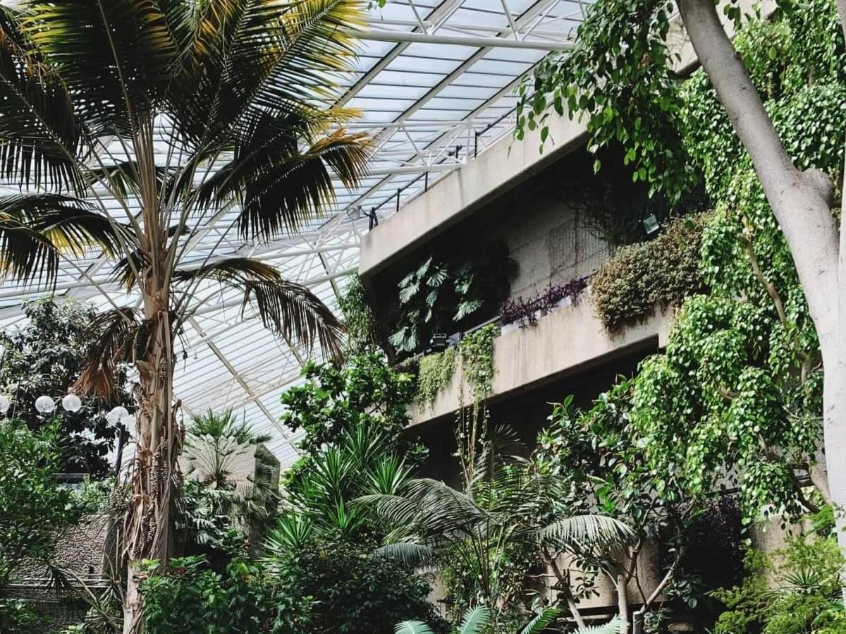 Hidden Gems in London - Barbican Conservatory