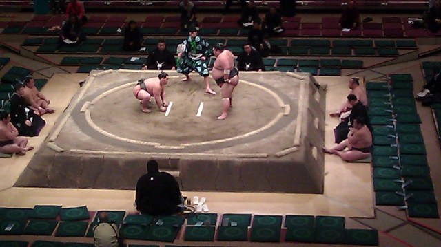 sumo match tokyo japan