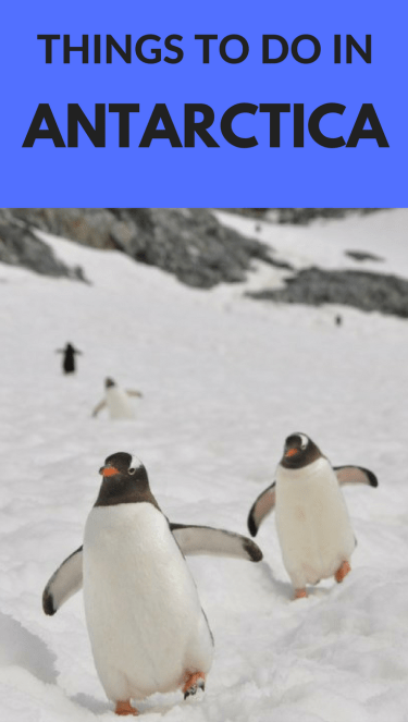 Incredible Things to do in Antarctica. **************************************************************************** Antarctica| Antarctica Travel | Antarctica Activities | Antarctica Cruise | Antarctica Facts | Antarctica Expedition | Antarctica Travel Bucket Lists | Antarctica Travel Cruises | Antarctica Travel Trips | Antarctica Travel Articles | Antarctica Travel Things to do | #Antarctica #penguins #bucketlist