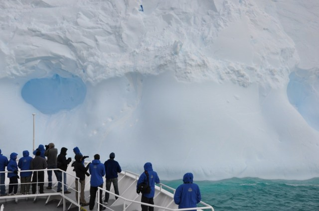 what to do in antarctica