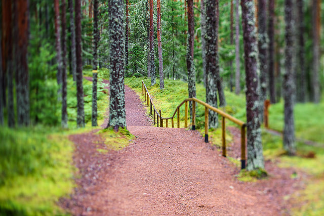 Best Things to do in Estonia: Lahemaa National Park
