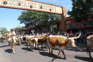Fort Worth Stockyards (Photo by Todd DeFeo)