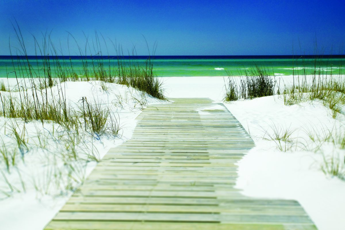 cropped-beach_access_in_south_walton_sukzxsuwcf4c3rob5nvqxlo_cmyk_s.jpg