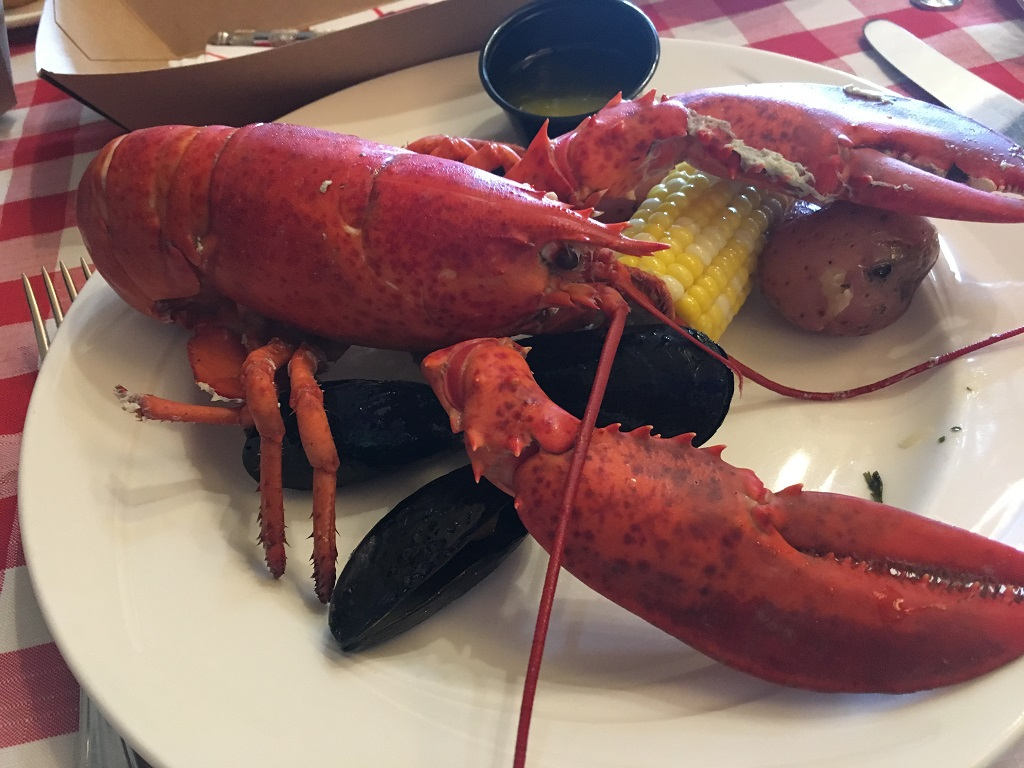 Norwegian Gem - Lobster Bake in Bar Harbor, Maine