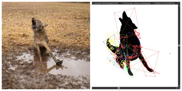 coyote before after