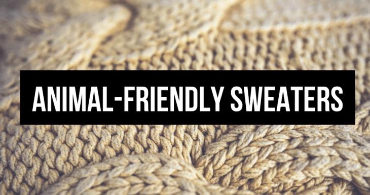 vegan sweaters 2018-2