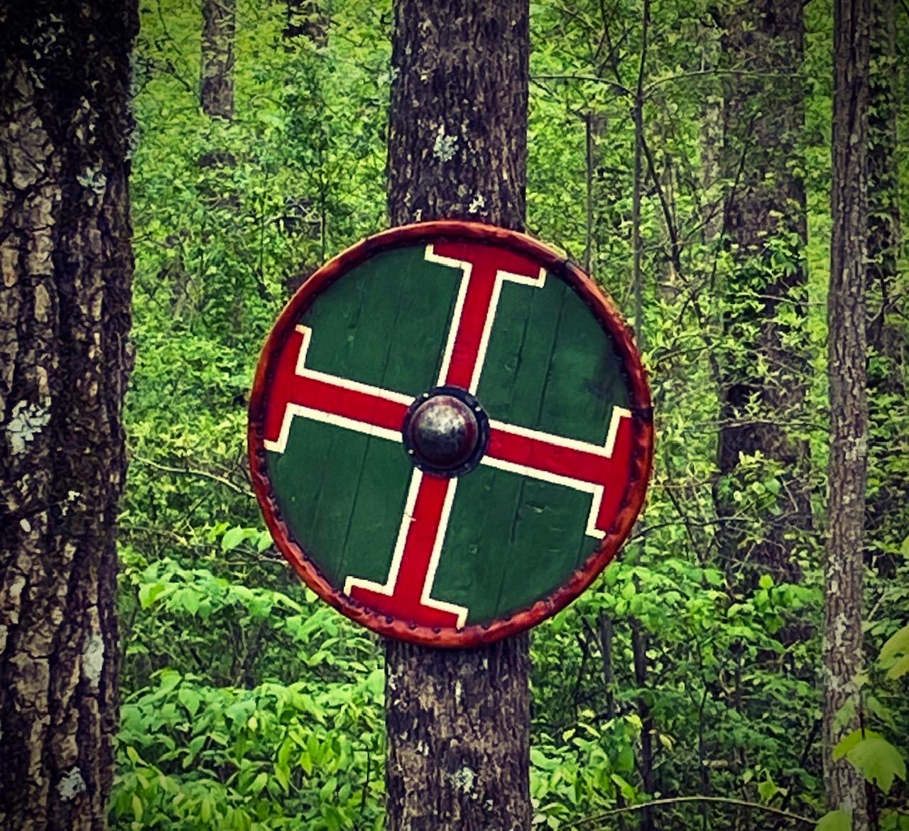 viking 5