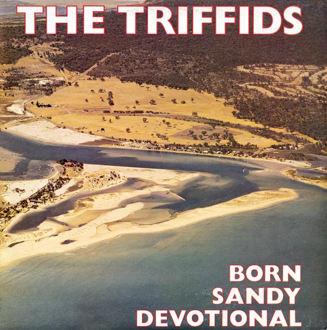 Bilderesultat for born sandy devotional the triffids