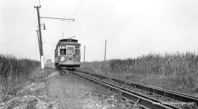 """CSL 2619 on Brandon private right-of-way near 123rd Street. Bob Lalich adds, """"CSL 2619 in image 896 is about to cross a short bridge just south of 126th St. Note that it has just met and passed a NB car in the siding north of the bridge. There was another siding at 122nd St on the Brandon line. I find it remarkable that there were two passing sidings located a half mile apart in the wetlands between Hegewisch and the East Side."""" (Joe L. Diaz Photo)"""