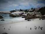 South Africa 3