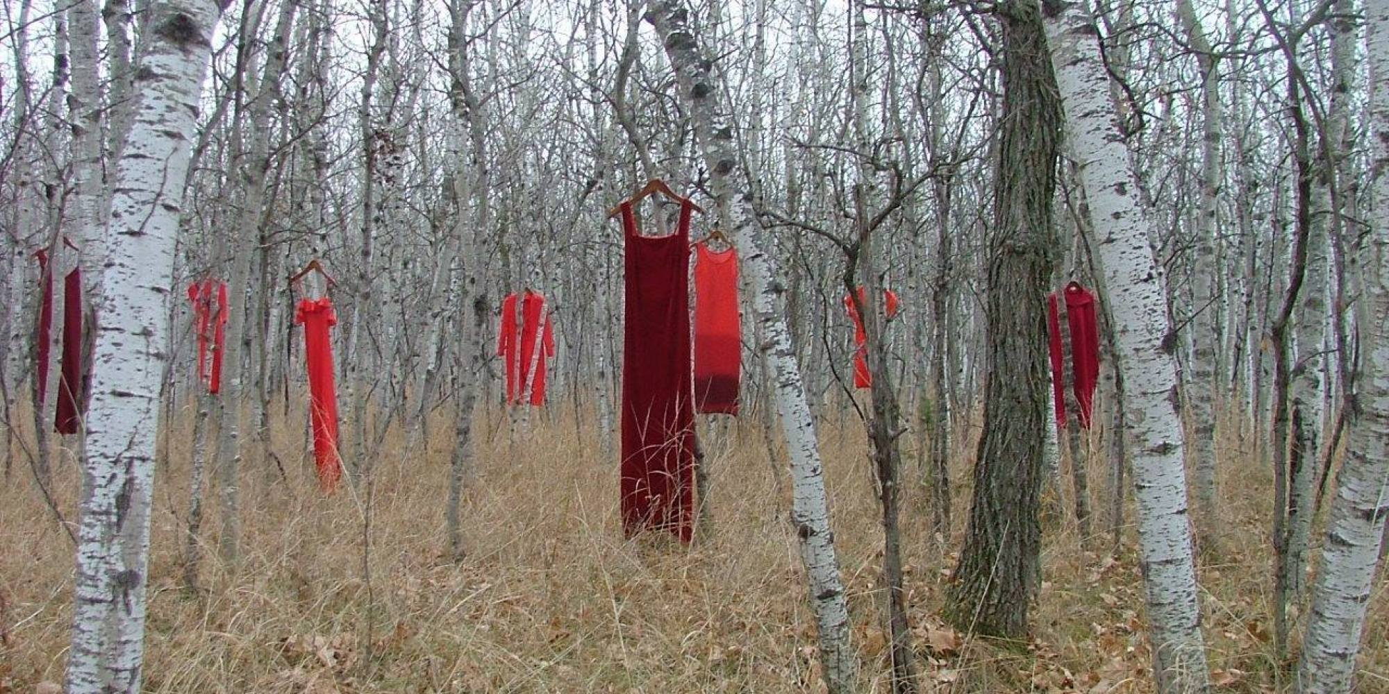 The REDress Project five years ago. It collects red dresses from the community and hangs them in public spaces as a visual reminder of the women who are no longer present