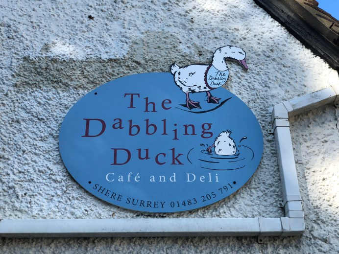 The Dabbling Duck.