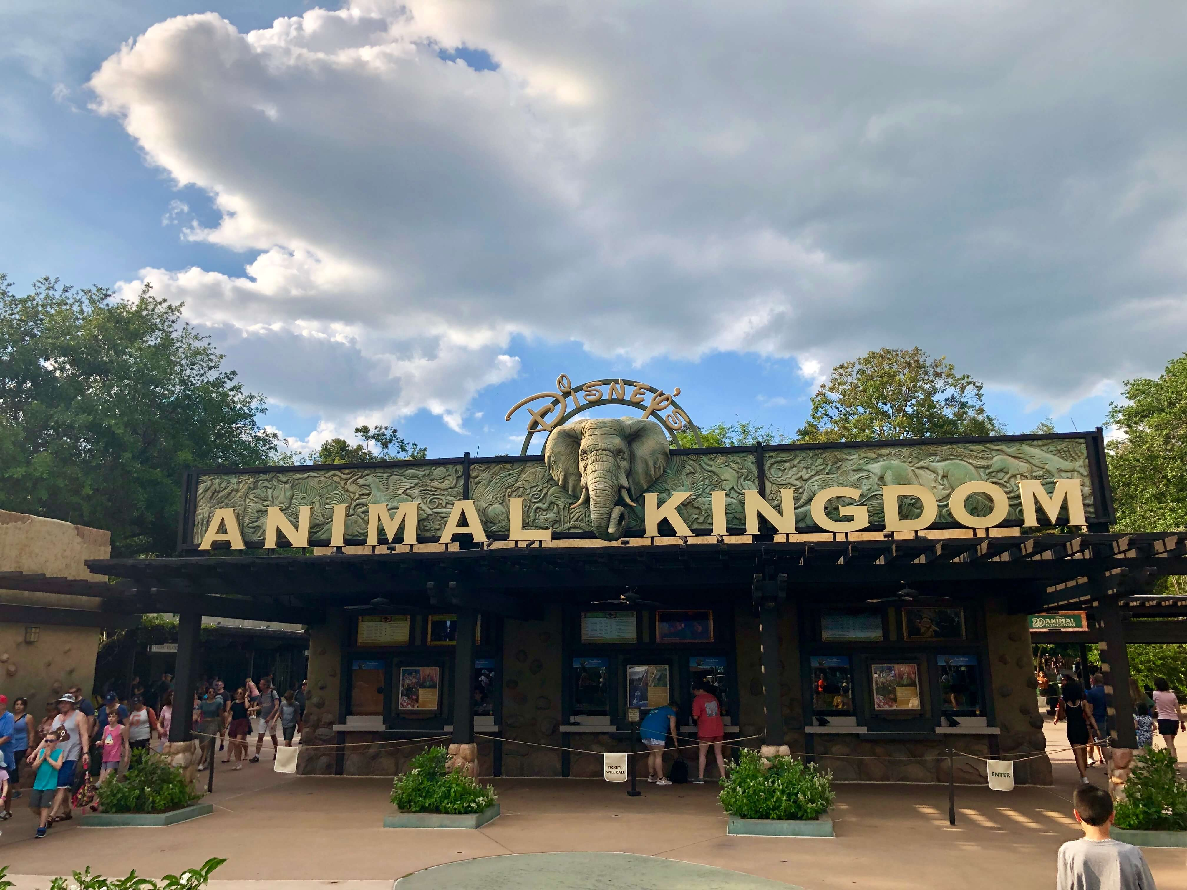 Animal Kingdom - Disneyland first time - Best time to visit Disneyland