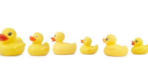Rubber Duck Line