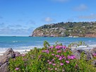 Pretty Sumner Beach - Things to Do in Christchurch - The Trusted Traveller