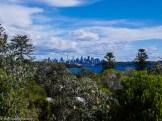 A city view at Watsons Bay