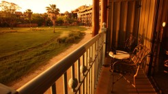 Savanna view from the balcony of Disney's Animal Kingdom Lodge- Where to Stay Near the Orlando Theme Parks - The Trusted Traveller