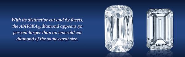 Billionaire Ashoka watch's diamonds