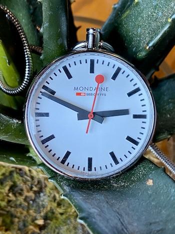 Mondaine EVO pocket watch cactus
