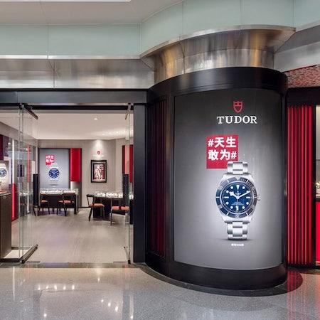 Tudor china