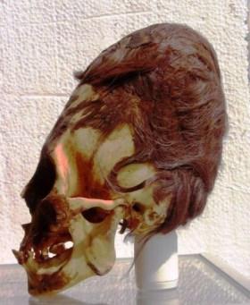 Crânio alongado Peru - cabelo vermelho