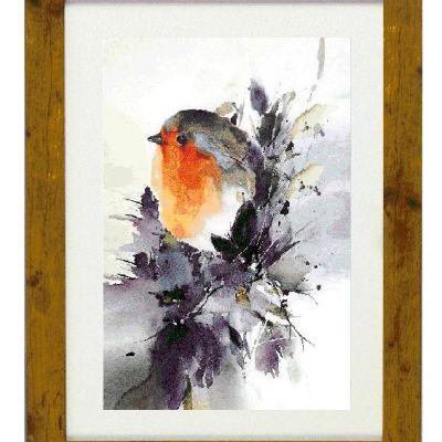 Pettirosso Robin
