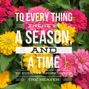 Time and a Season