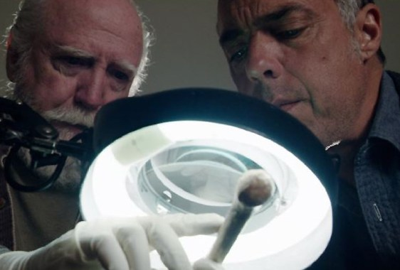 Scott Wilson, Titus Welliver-Bosch - Amazon Studios