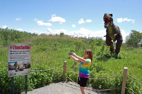 TRexSelfie at Field Station: Dinosaurs