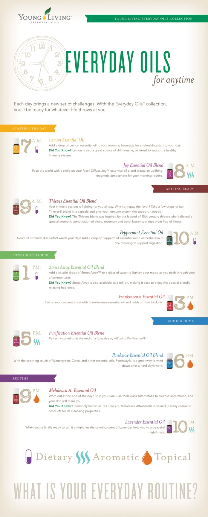 Essential oils - everyday uses