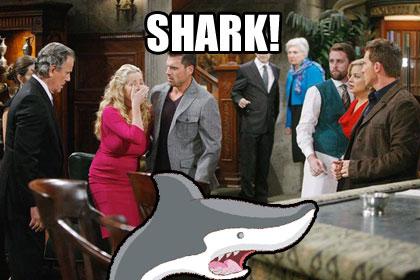 memes_shark