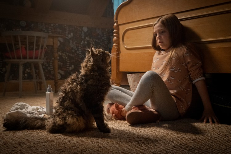 Film Review Pet Sematary