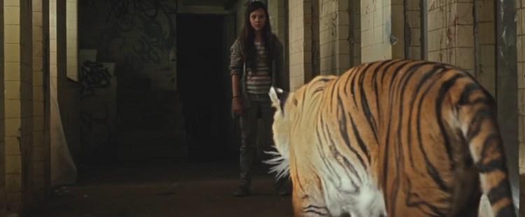 tigersarenot2