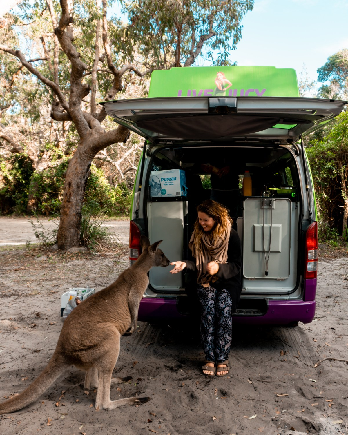 Sydney to Byron Bay Road Trip: Camping in the Jucy Condo