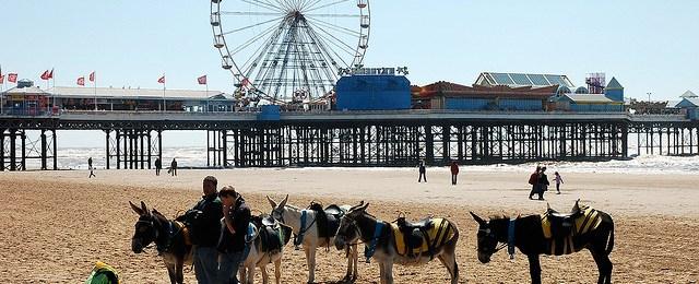 Great Football League Teams 28: Blackpool, 2006-7