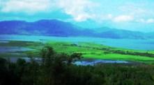 "the lake "" Laguna de bay"""