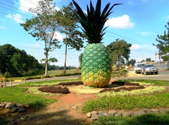 A pineapple statue