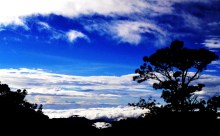 """The Famous """"Sea of Clouds"""""""