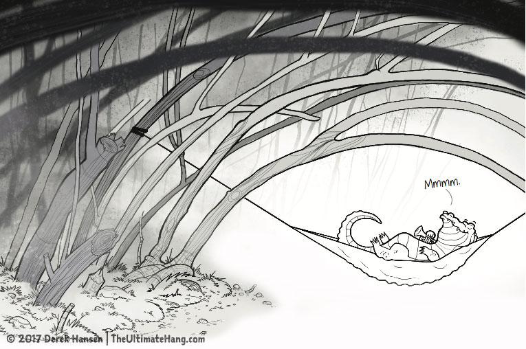 Alligator sleeping in a hammock