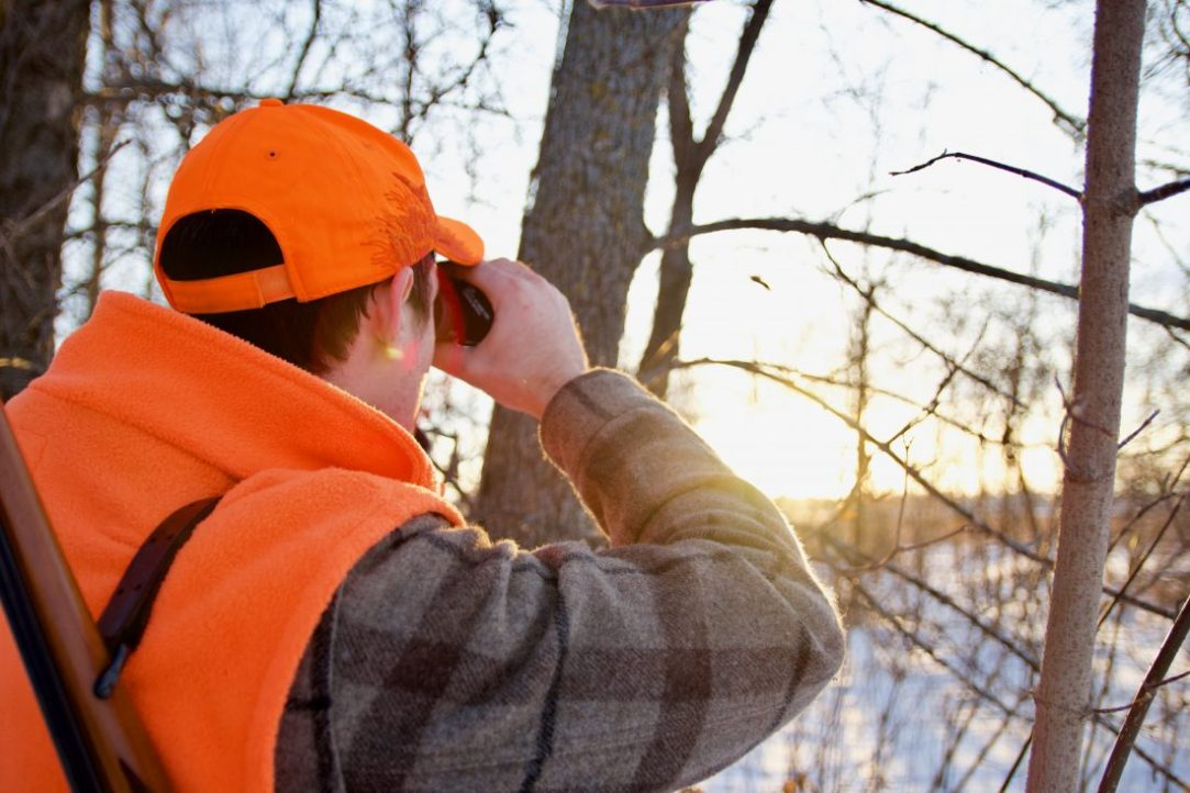 A beginner's guide to spot-and-stalk hunting