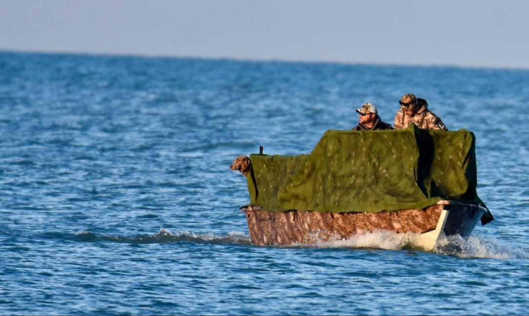 The life aquatic: Using a boat as an alternative hunting vehicle