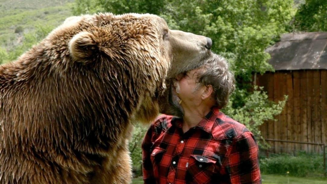 6 percent of Americans think they could beat a grizzly bear in hand-to-hand combat. They're (dead) wrong.