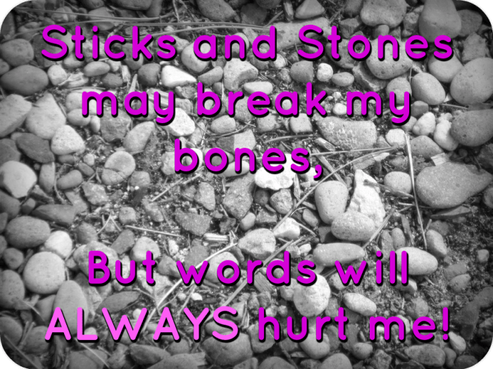 sticks and stones img2