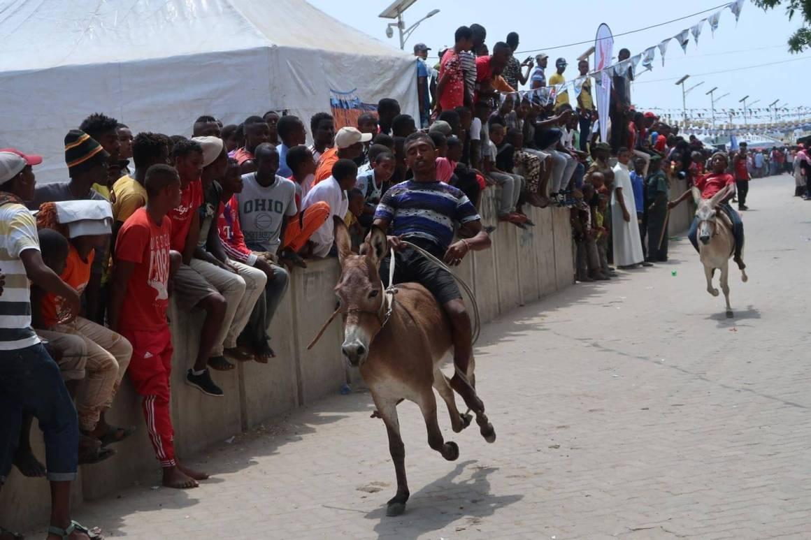 Lamu donkey racers