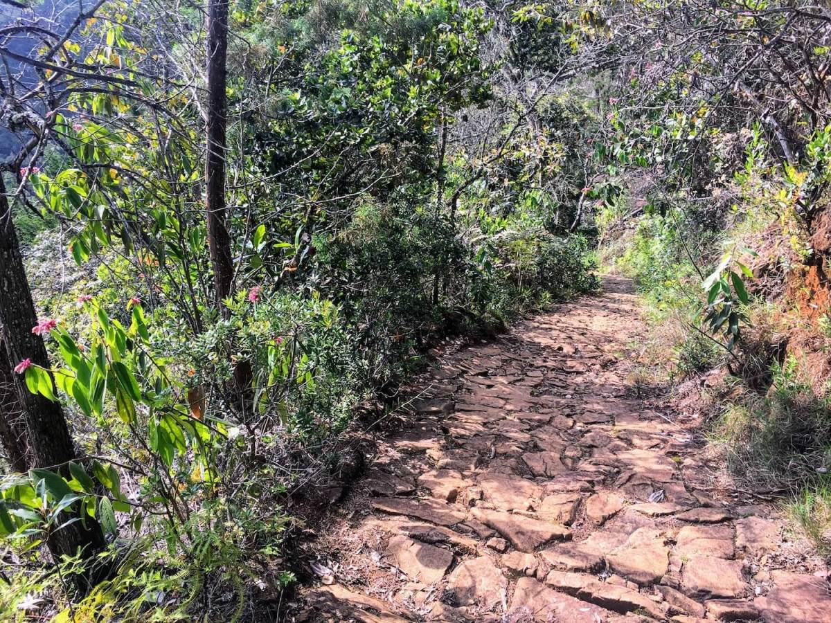 Pre-Hispanic trail on Cerro Quitasol