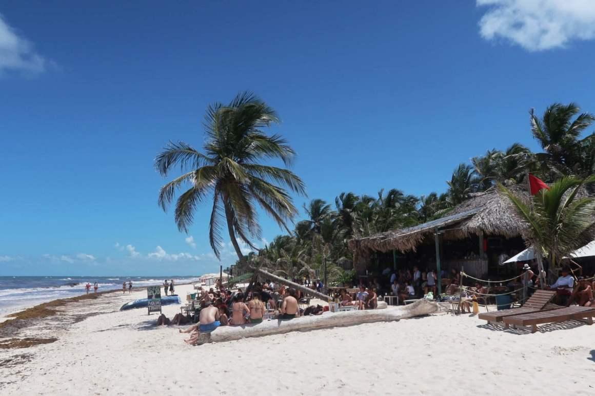 eufemia beach club view from beach in tulum mexico