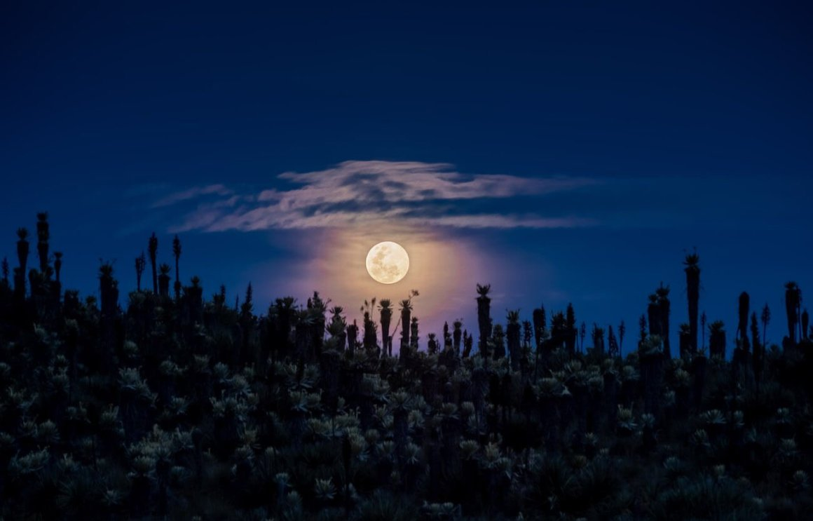 Full moon over the paramo