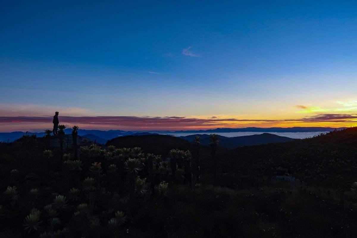 Sunrise, freilejones, and clouds