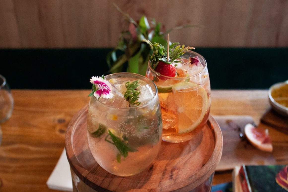 gin cocktails at veld & sea botanical class in cape town food experience