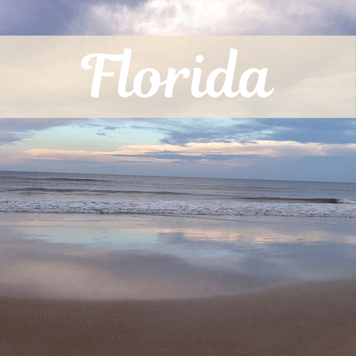 Florida travel guides with pink and purple beach sunset
